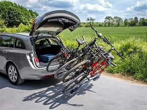 eufab luke test 2018 bewertung fahrradtr ger ahk tests. Black Bedroom Furniture Sets. Home Design Ideas